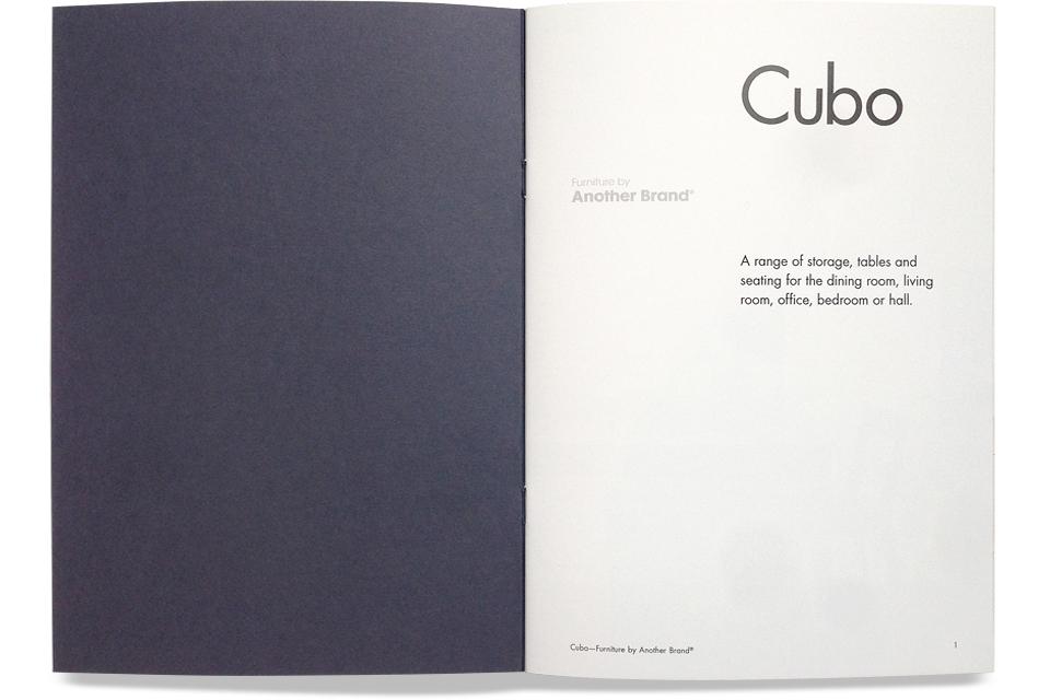 Cubo-Web-2