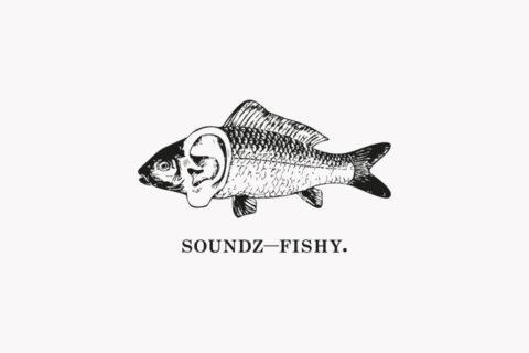 soundz fishy, brand identity, Glenn Haddock, Audio, Visual